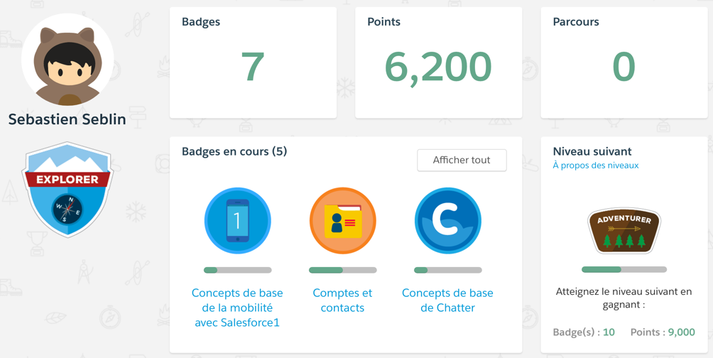 Gamification Salesforce